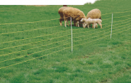 Schafnetz horinetz super, 90cm hoch, mit Einzelspitze, 50m