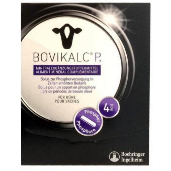 Bovikalc® P Karton 4 x 195 g Bolus Karton 4  x 195 g