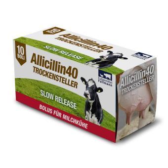 Allicillin 40 Trockensteller